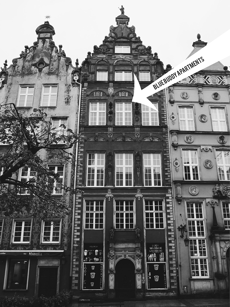blue buddy apartments gdansk tri city poland best place to stay in gdansk